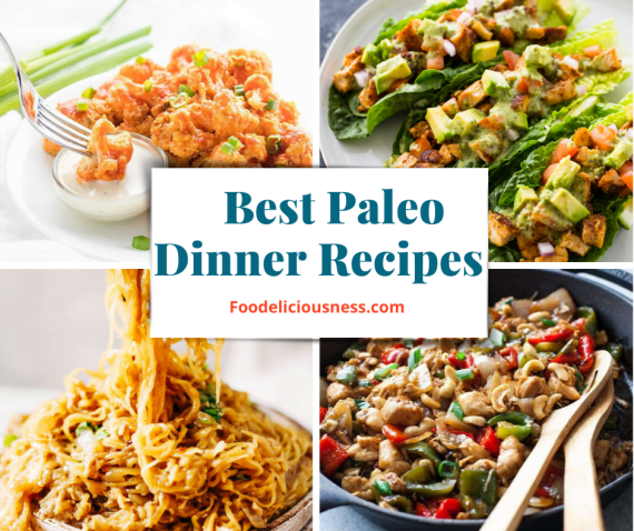 Best Paleo Dinner Recipes