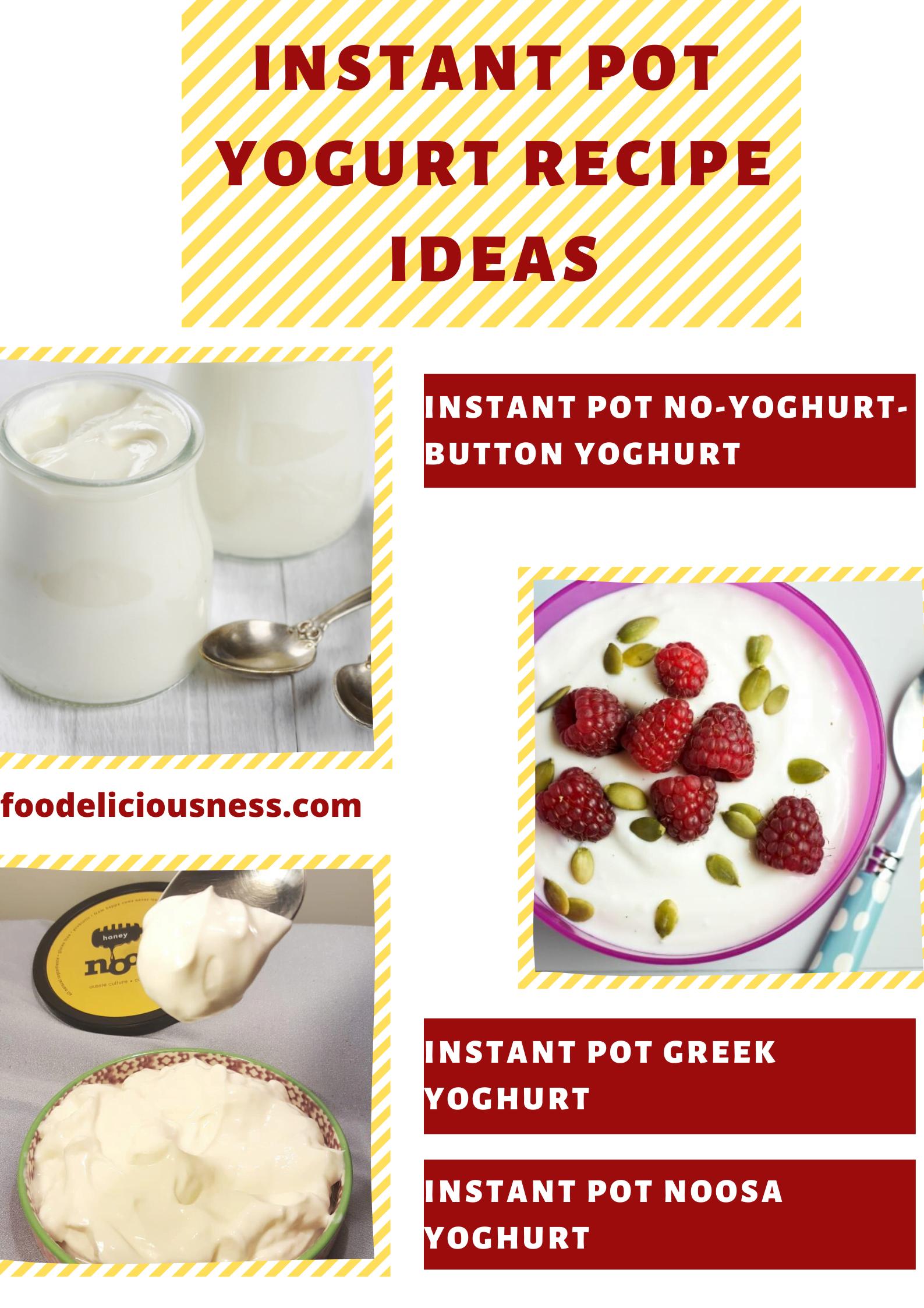 instant pot yogurt recipe ideas 1