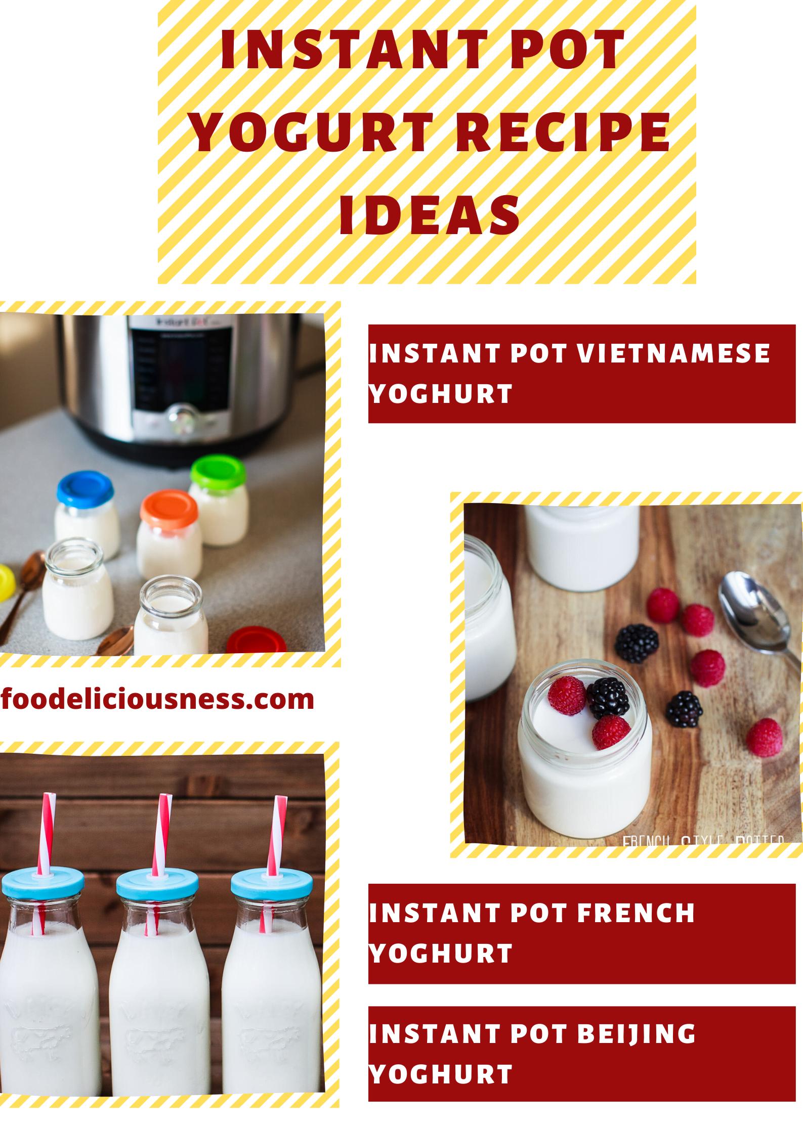 instant pot yogurt recipe ideas 2