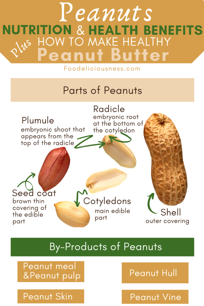 Peanuts Parts and By Products