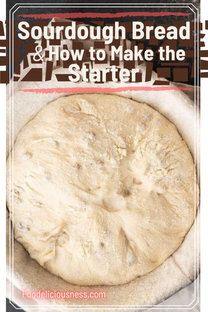 Sourdough Bread and How to make the Starter 2
