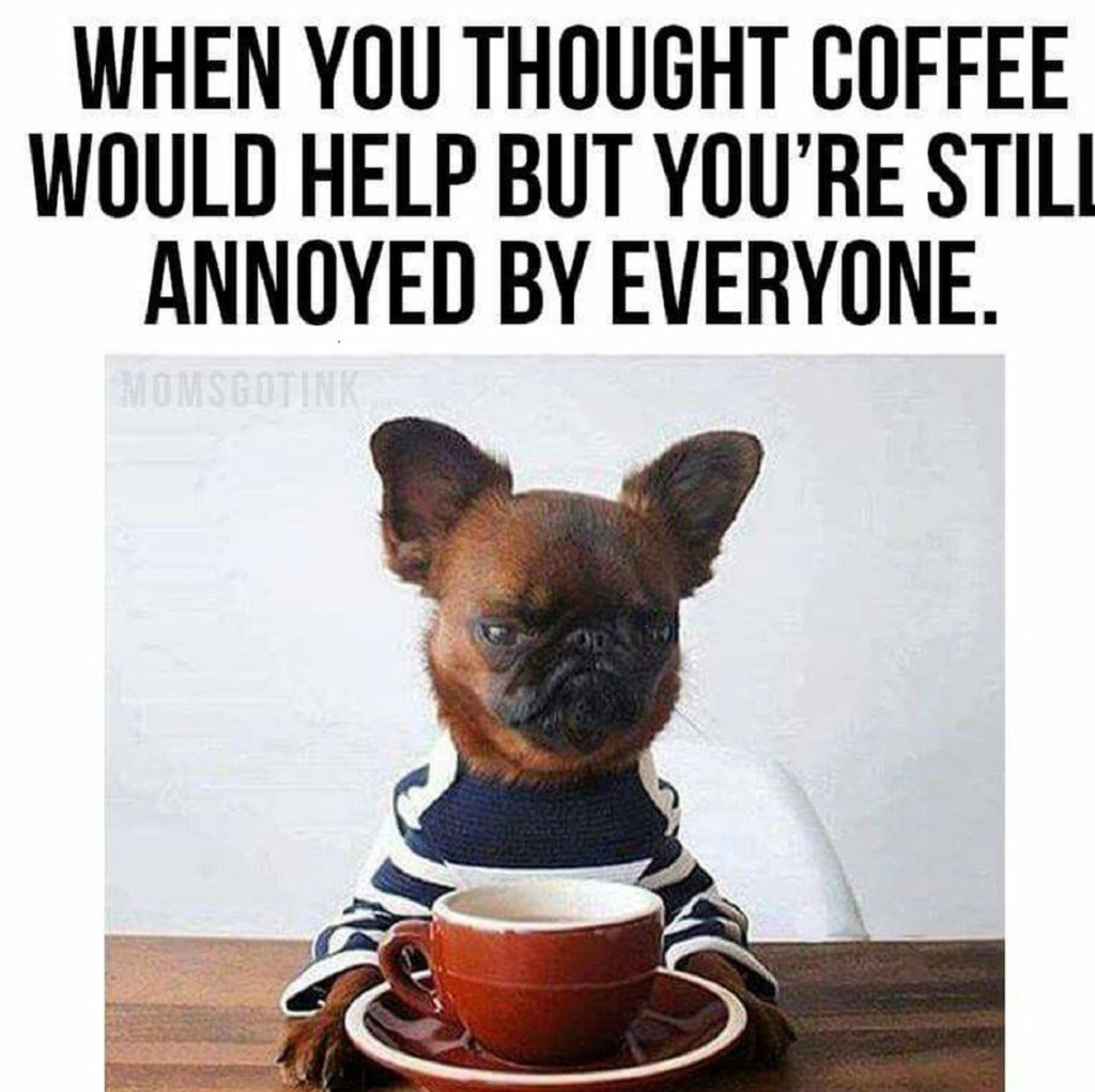 coffee quotes and dogs